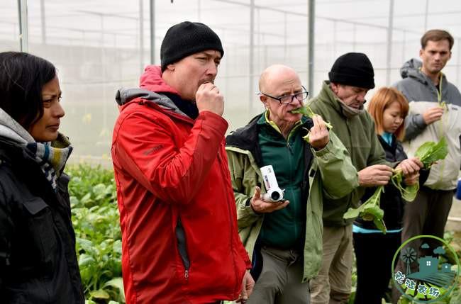 外国专家们在基地当场试吃有机蔬菜-吕建伟摄